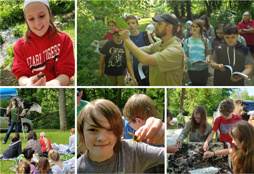 OMS students learn about plants, animals and streams.